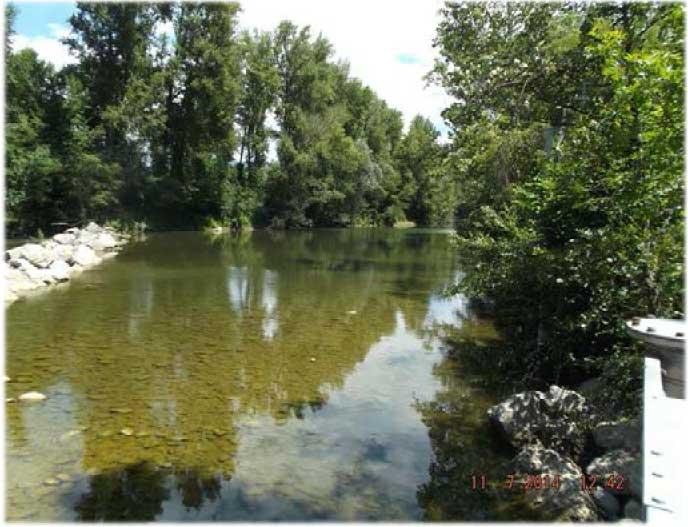 Arno a Buonriposo a valle 05/07/2014 - report Arpat (CTA)