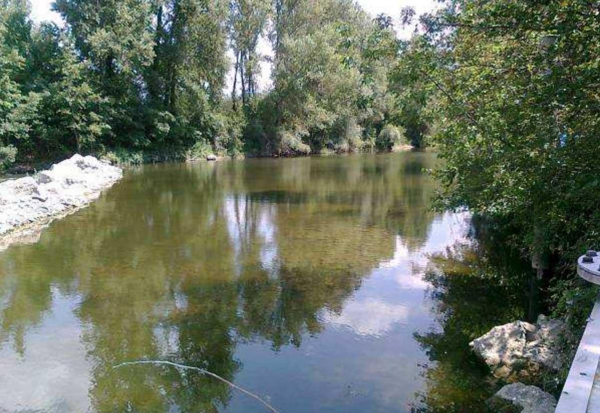 Arno a Buonriposo a monte 10/07/2012- report Arpat (CTA)