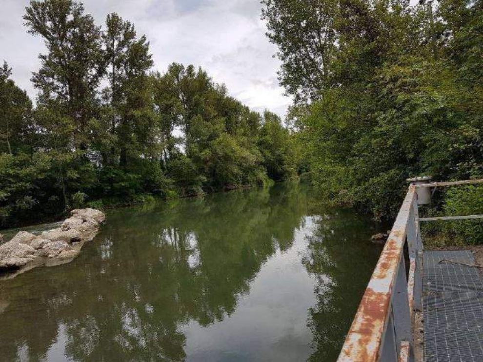 Arno a Buonriposo a monte 17/06/2018 - report Arpat (CTA)