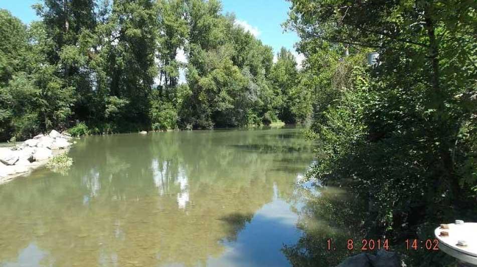 Arno a Buonriposo a monte 04/08/2016 - report Arpat (CTA)