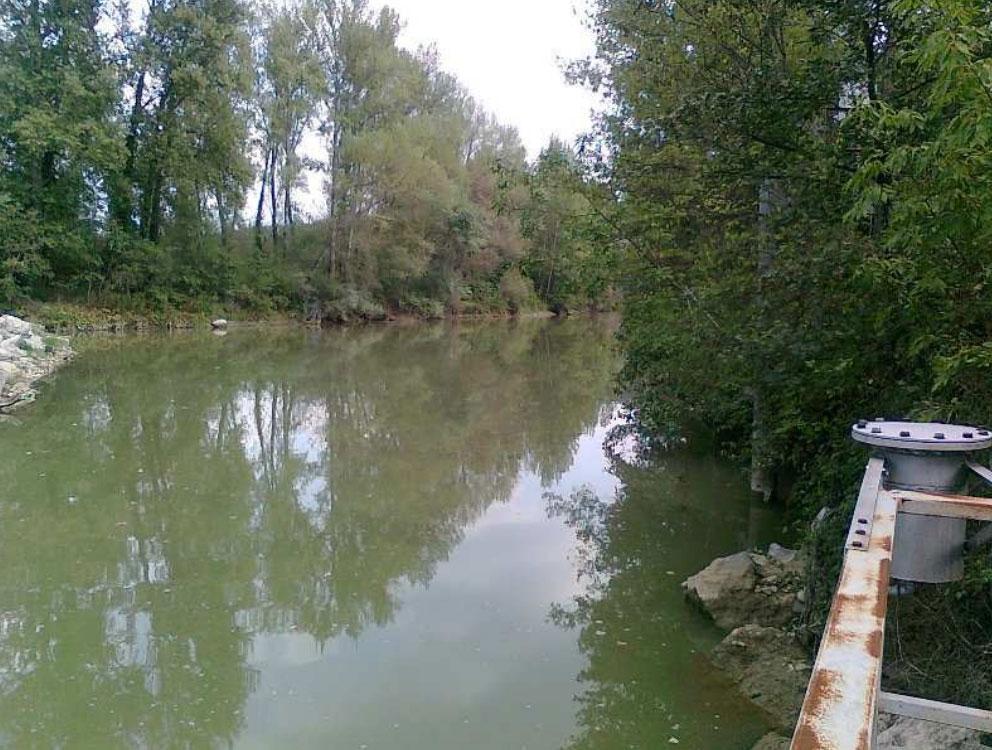 Arno a Buonriposo a monte 09/09/2012 - report Arpat (CTA)
