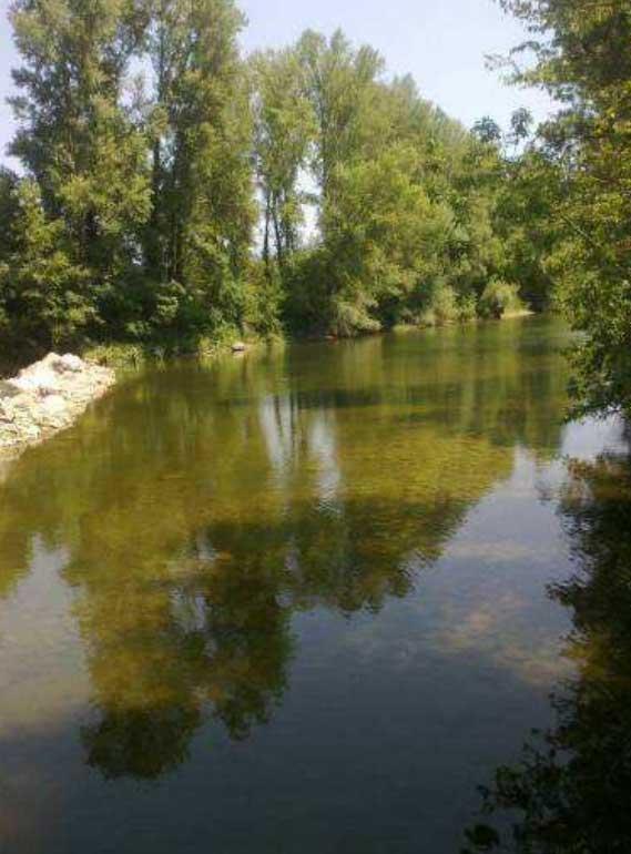 Arno a Buonriposo a monte 23/07/2012 - report Arpat (CTA)