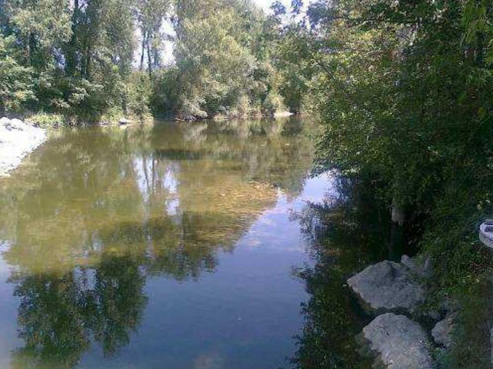 Arno a Buonriposo a monte 30/07/2012 - report Arpat (CTA)