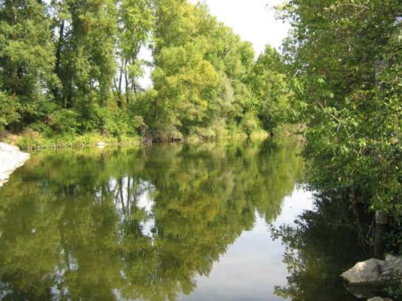 Arno a Buonriposo, 12/09/2011 - report Arpat (CTA)