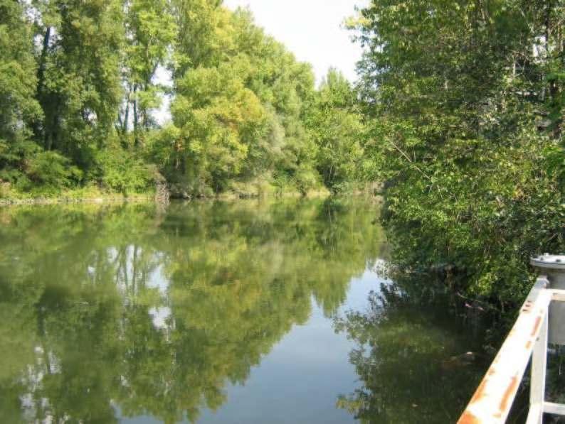 Arno a Buonriposo, 19/09/2011 - report Arpat (CTA)
